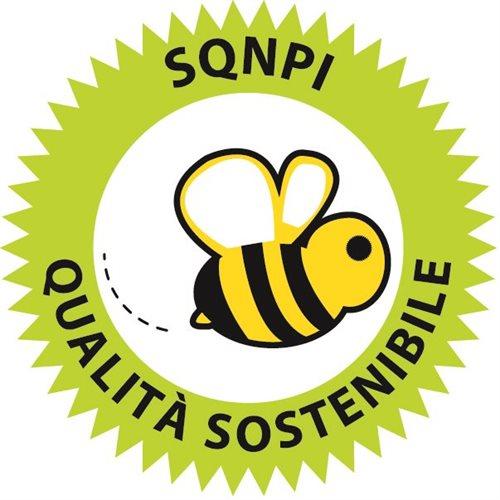 Logo_SQNPI_def_G2406